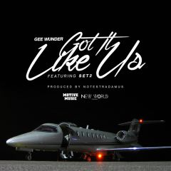 840095733571- Got It Like Us - Digital [mp3]